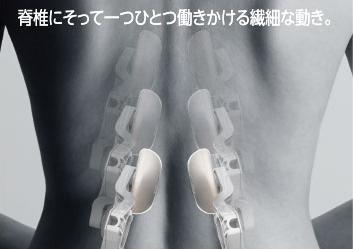 脊椎にそって一つひとつ働きかける繊細な動き。
